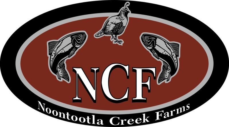 Noontootla Creek Farms in Blue Ridge Georgia